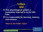 lobes 500
