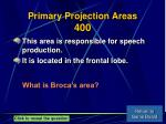 primary projection areas 400