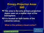 primary projection areas 500