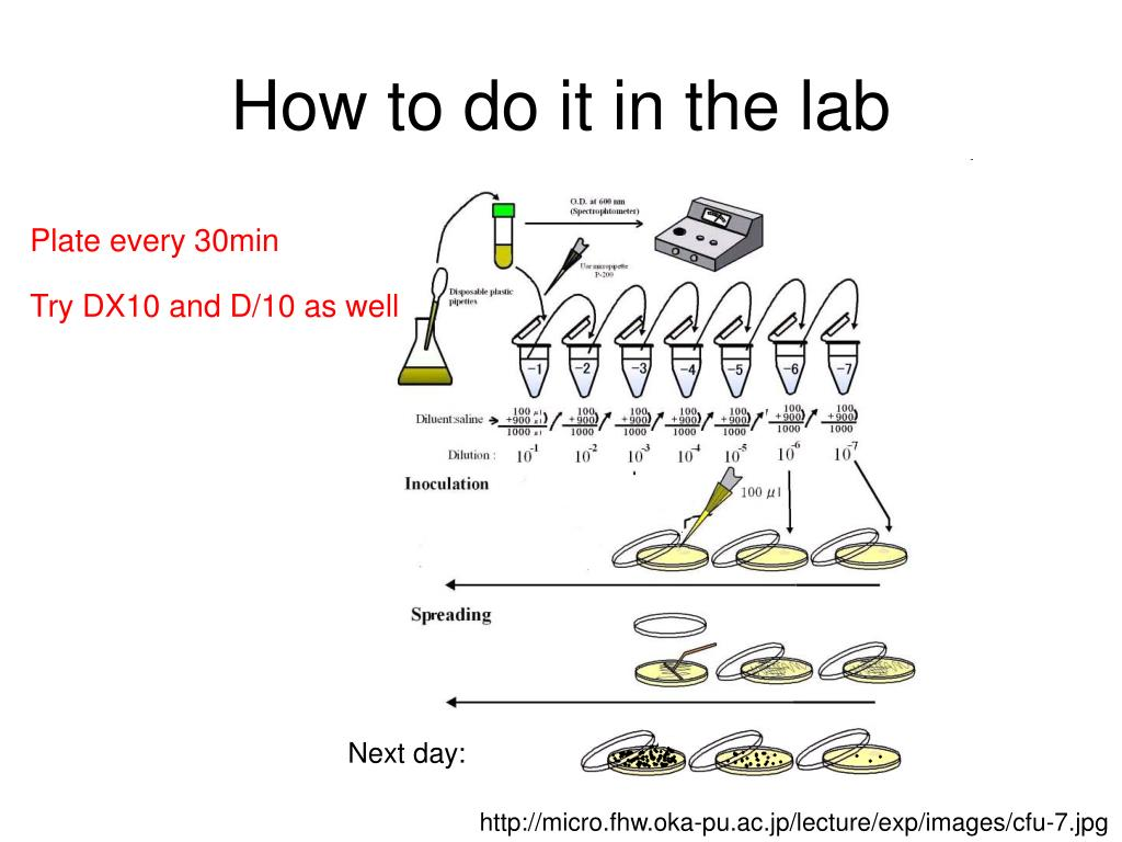 How to do it in the lab