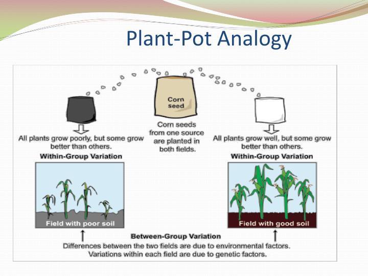 Plant-Pot Analogy