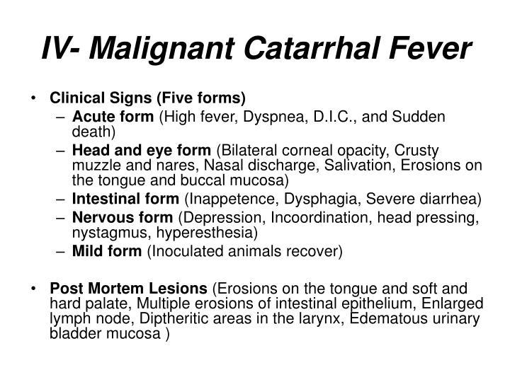 IV- Malignant Catarrhal Fever