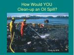how would you clean up an oil spill