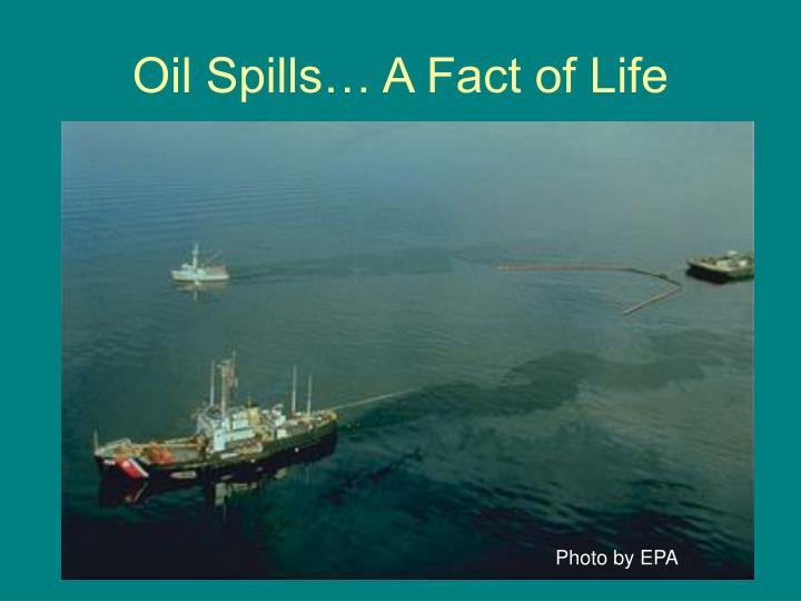 Oil spills a fact of life