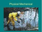 physical mechanical