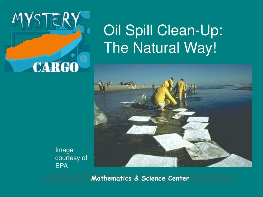 Oil Spill Clean-Up:  The Natural Way!