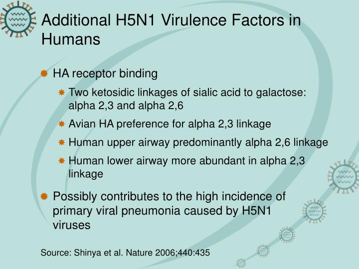 Additional H5N1 Virulence Factors in Humans
