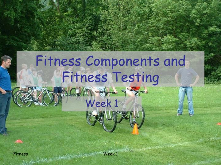 fitness components and fitness testing n.