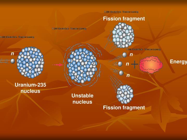 Fission fragment