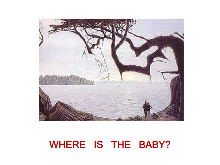 WHERE   IS   THE   BABY?