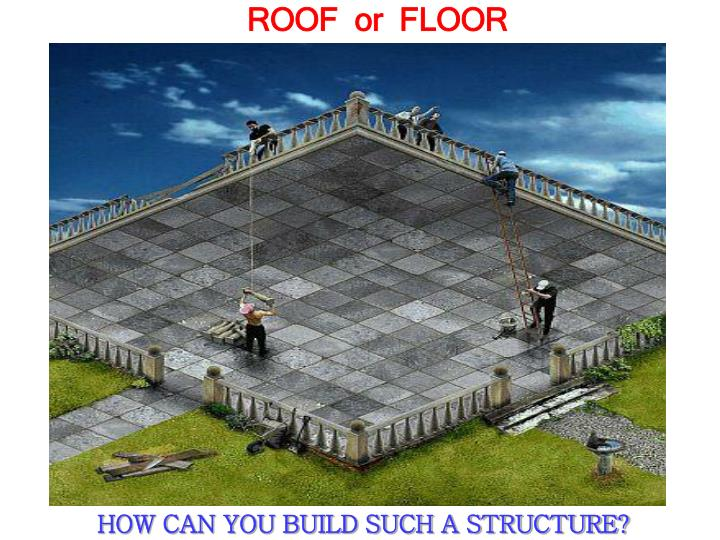ROOF  or  FLOOR