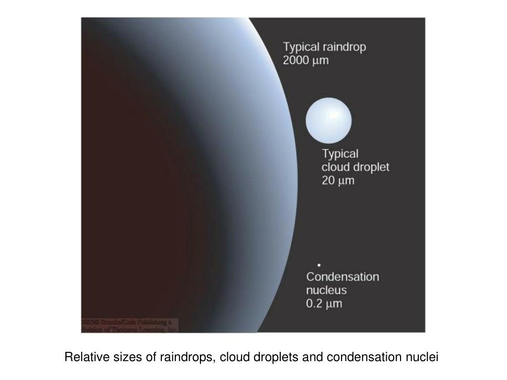 Relative sizes of raindrops, cloud droplets and condensation nuclei