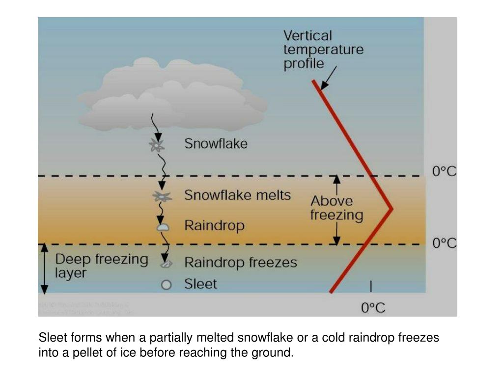 Sleet forms when a partially melted snowflake or a cold raindrop freezes into a pellet of ice before reaching the ground.