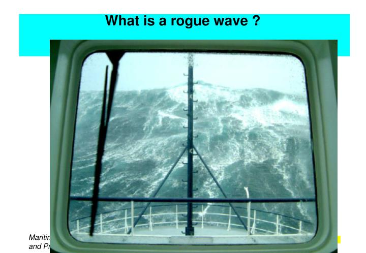 What is a rogue wave