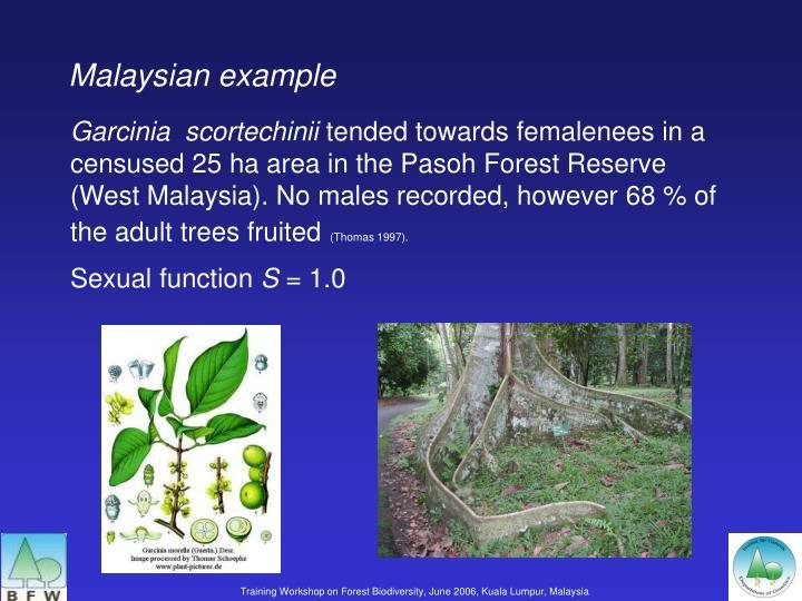 Malaysian example