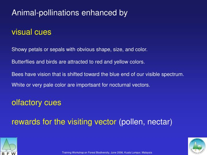 Animal-pollinations enhanced by