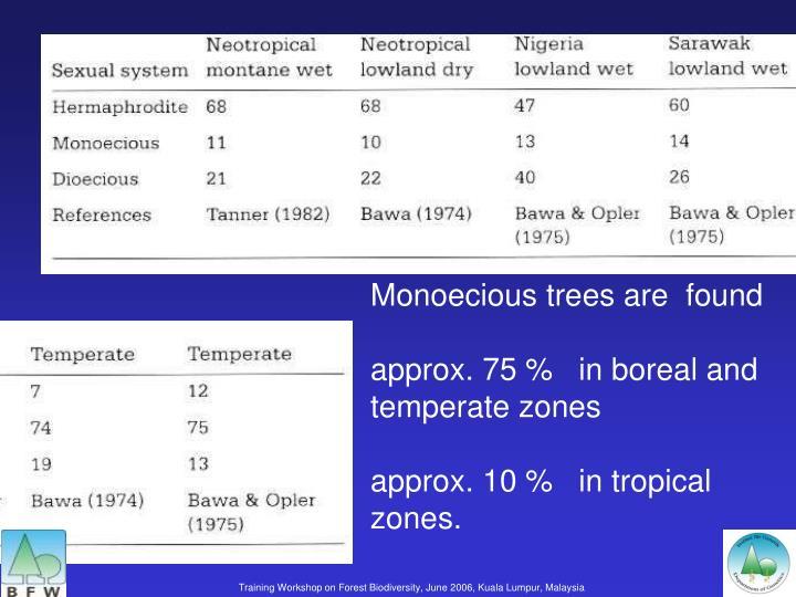 Monoecious trees are  found