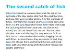 the second catch of fish1