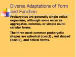 diverse adaptations of form and function1