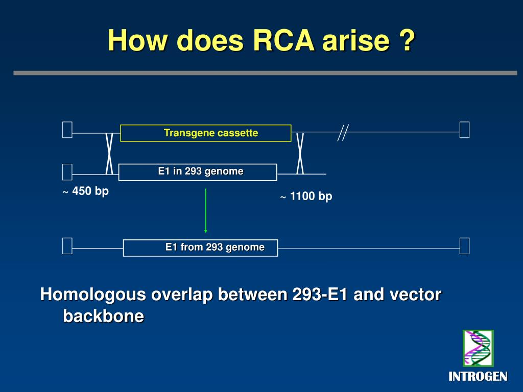 How does RCA arise ?