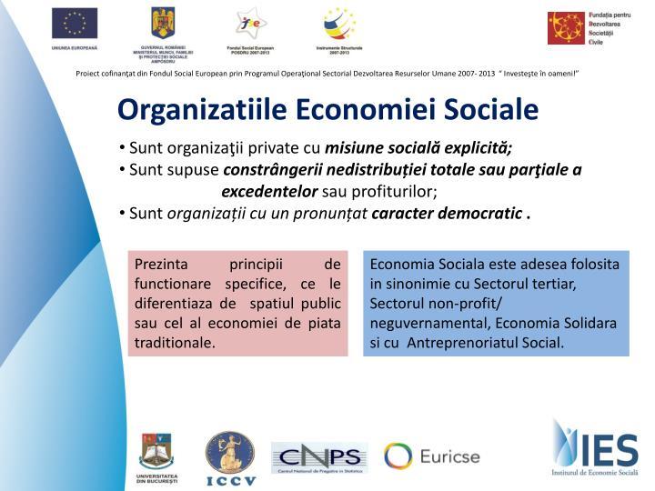 Organizatiile economiei sociale