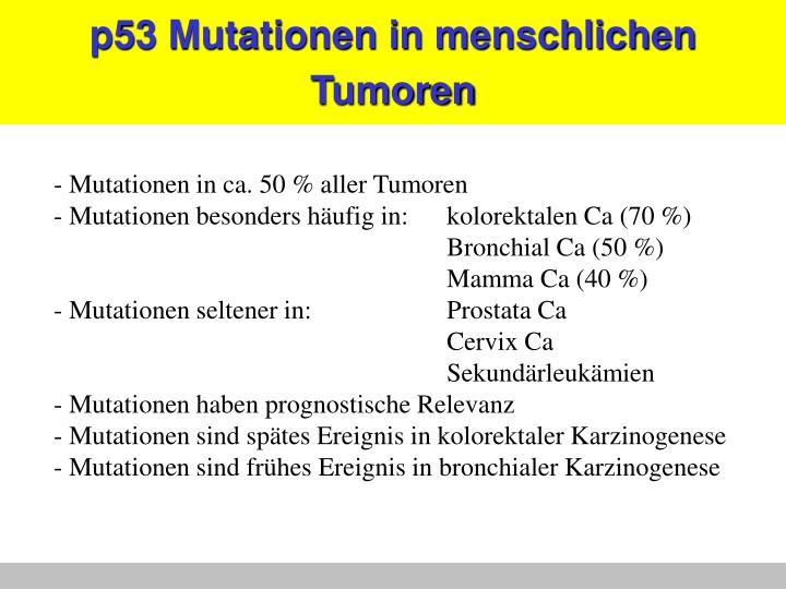 p53 Mutationen in menschlichen Tumoren