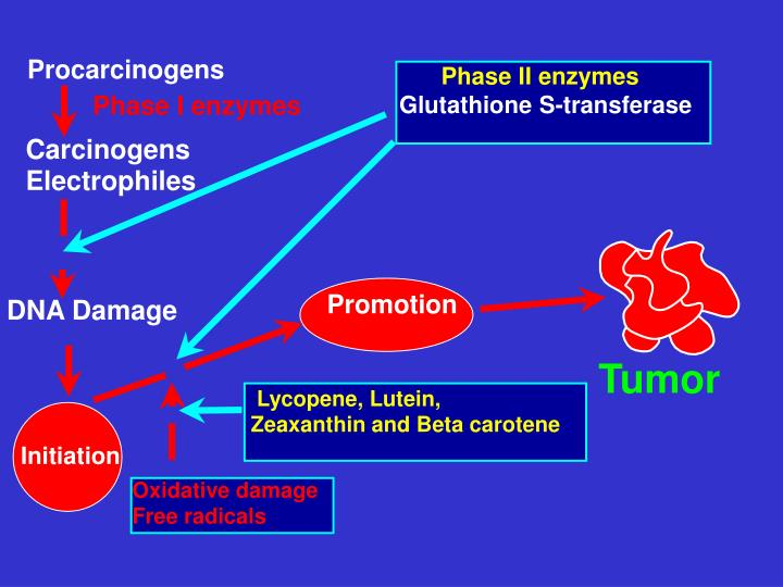 Procarcinogens