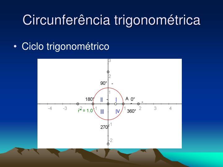Circunfer ncia trigonom trica