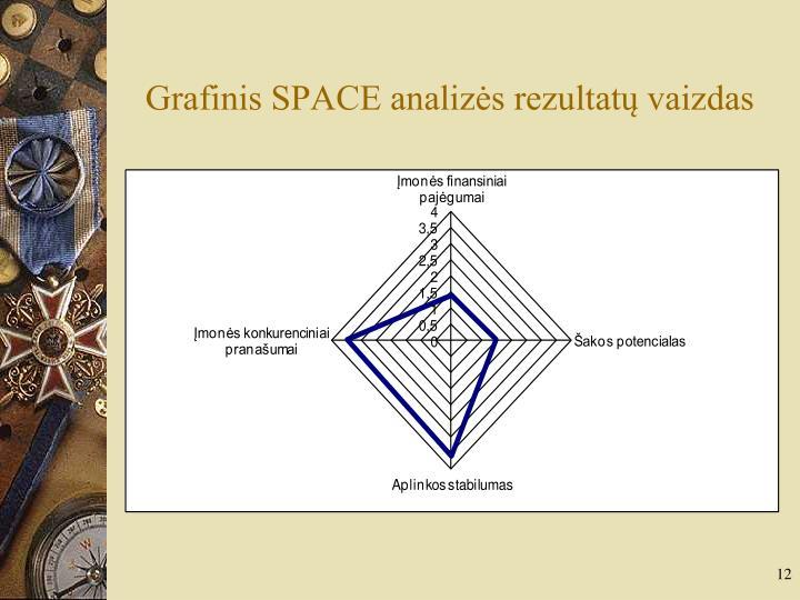 Grafinis SPACE analizės rezultatų vaizdas