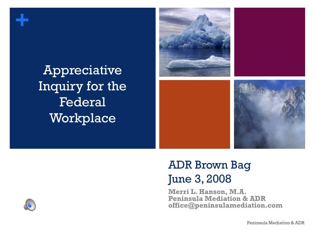adr brown bag june 3 2008 l.