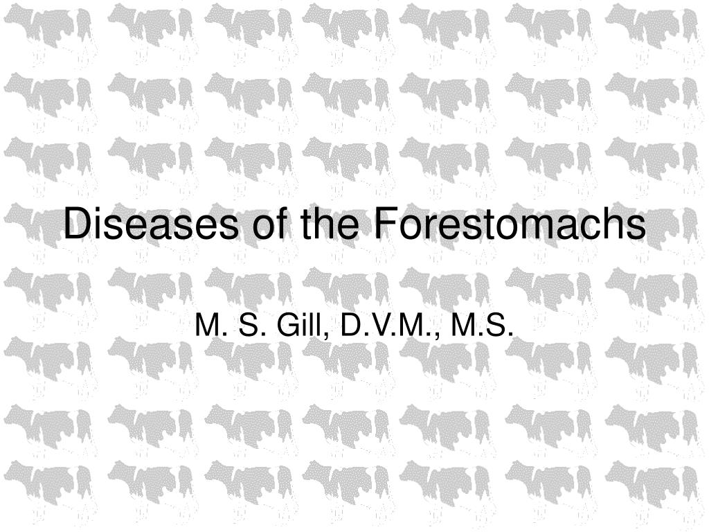 Diseases of the Forestomachs