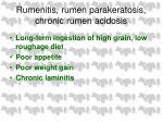 rumenitis rumen parakeratosis chronic rumen acidosis