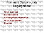 ruminant carbohydrate engorgement