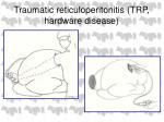 traumatic reticuloperitonitis trp hardware disease54