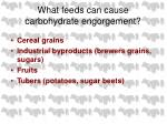 what feeds can cause carbohydrate engorgement