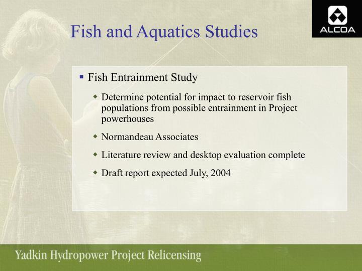 Fish and Aquatics Studies