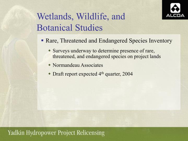 Wetlands, Wildlife, and