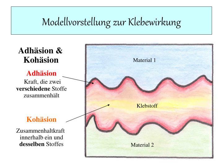 Modellvorstellung zur Klebewirkung