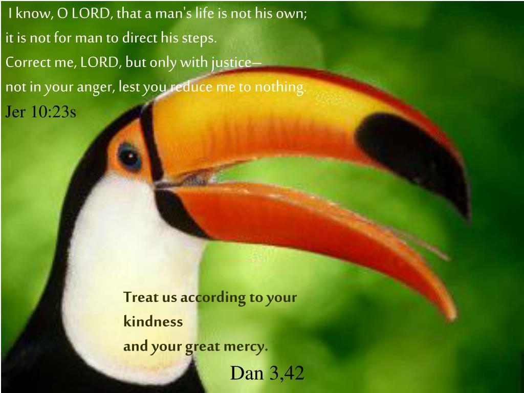 I know, O LORD, that a man's life is not his own;