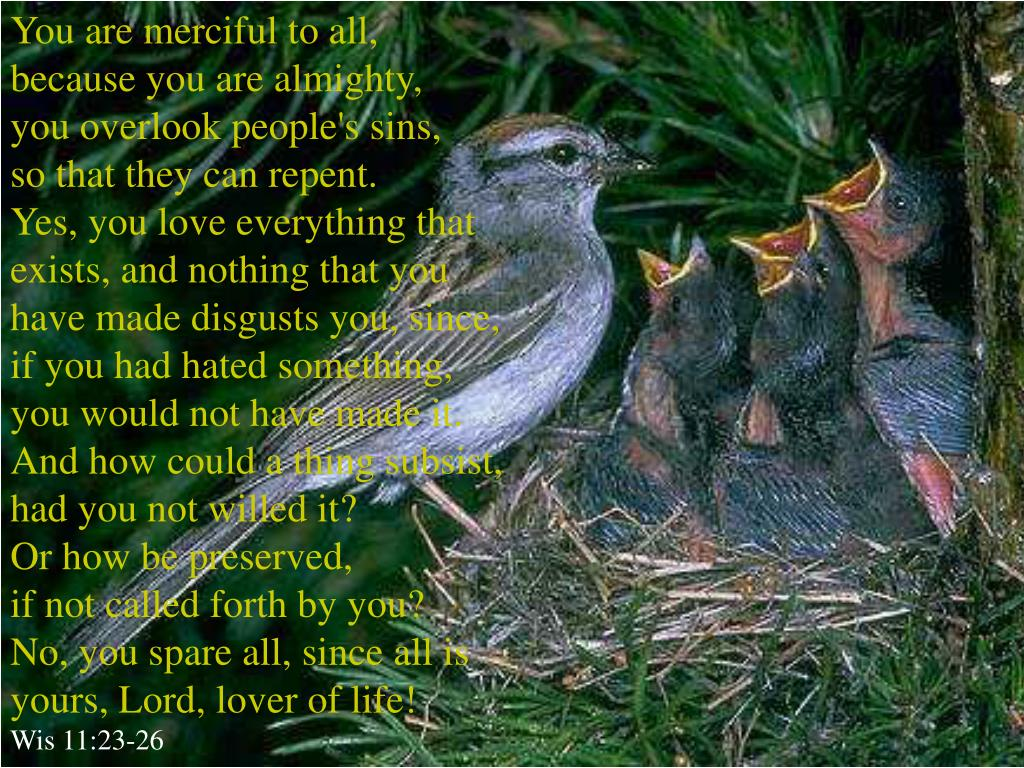 You are merciful to all,