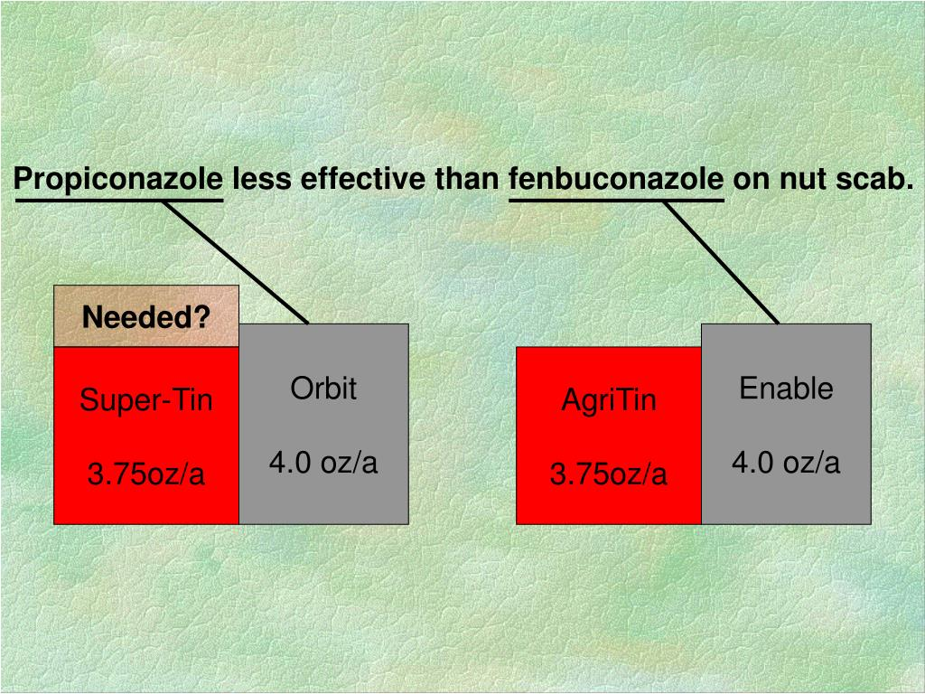 Propiconazole less effective than fenbuconazole on nut scab.