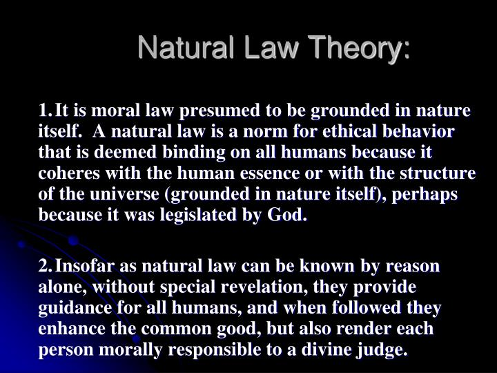 Natural Law Theory: