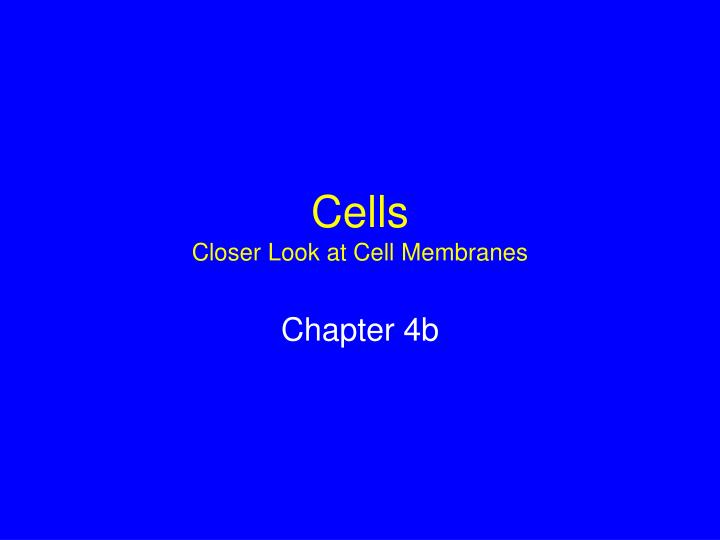 cells closer look at cell membranes n.