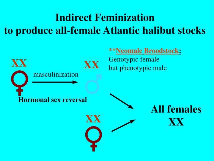 Indirect Feminization