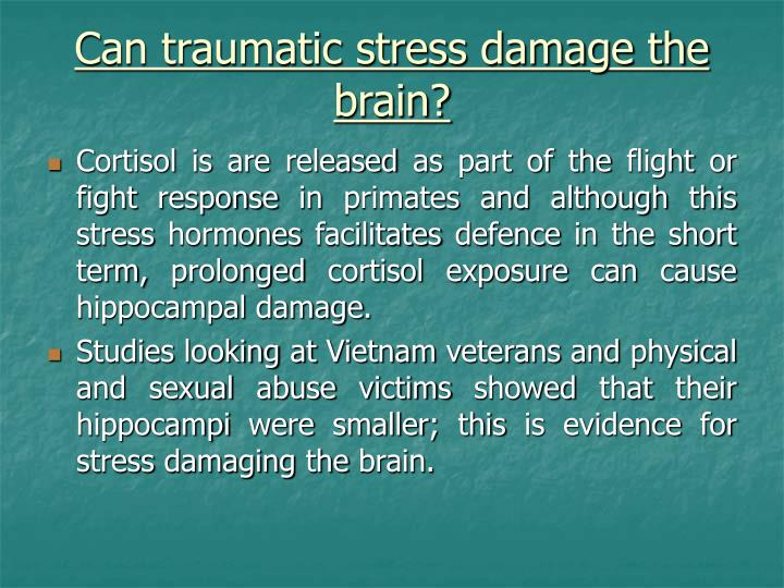Can traumatic stress damage the brain?