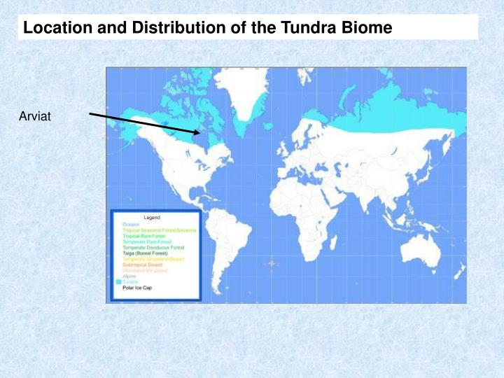 Location and Distribution of the Tundra Biome