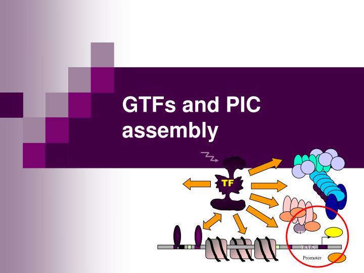 gtfs and pic assembly n.