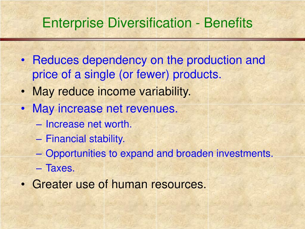 Enterprise Diversification - Benefits