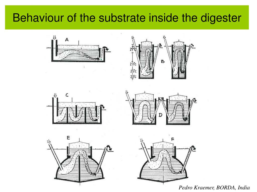 Behaviour of the substrate inside the digester