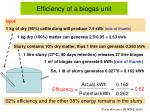 efficiency of a biogas unit